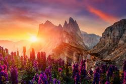Amazing Dolomites Mountains Landscape wi