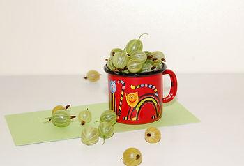 крыжовник - ягодный рацион летнего здорового питания