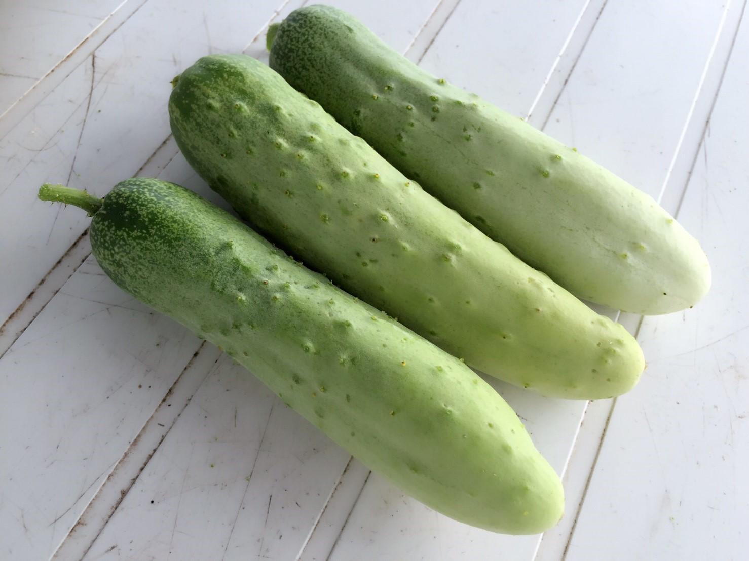 ポマイカイ野菜_2099.jpg