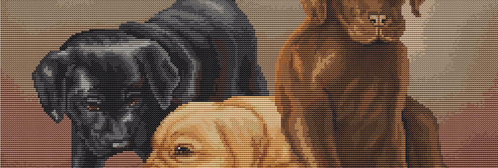 PT435 - Dogs | Printed Needlepoint