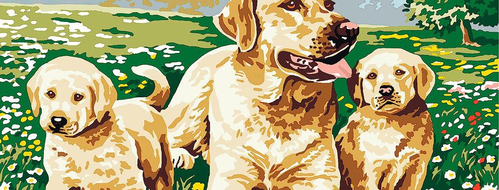PC04 - Dogs   Printed Cross Stitch