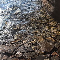 Peace River Shoreline 3.jpg