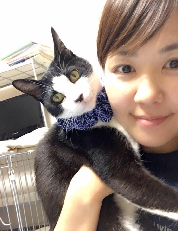 調布市 | ラフスペース | roughspace | ペット | 動物愛護 | 保護犬 | 保護猫 | 猫カフェ