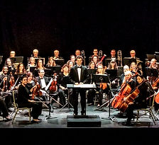 Woodstock Symphony Orchestra on the Stage of the Woodstock Playhouse_edited.jpg