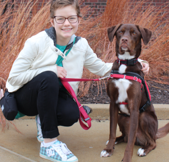 Thinking of getting a Diabetes Alert Dog? What to look for ? - Jennifer Cattet Ph.D.