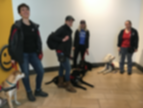 service dog training class.png