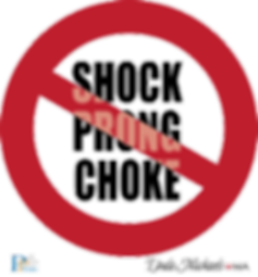 No-Shock-No-Prong-No-Choke-Thinner-PRINT