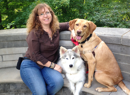 Why are service dogs so expensive? - Jennifer Cattet Ph.D.