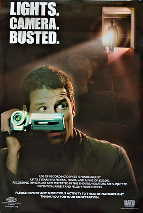 Lights, Camera, Busted Movie Theater Poster
