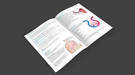 AED-Double-pAGE-3-Dark-bACK.jpg