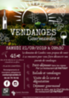 vendanges gourmandes v6.png