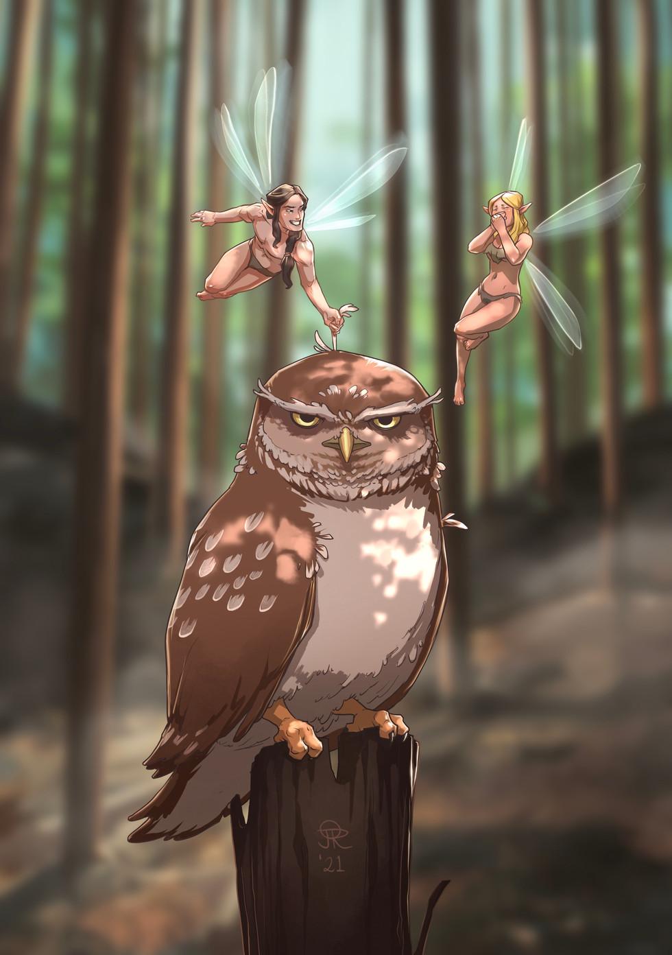 owl teasers.jpeg