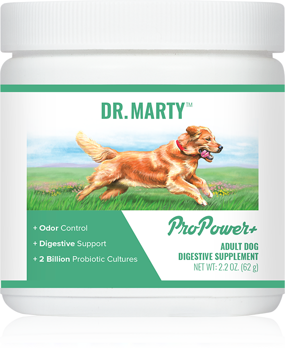 drMarty_pro_power.png