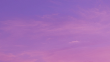 Purple Music Store Etsy Banner.png