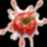 tomato splat.png