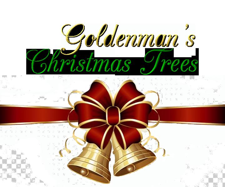 Christmas Gift Shop Goldenman Christmas Trees United States