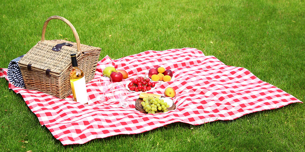 Mature Singles - Picnic In The Park (social distance rules apply)