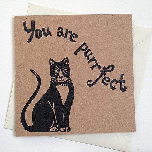 Purrfect Cat Card
