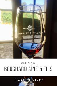 visit to Bouchard Aîné et Fils