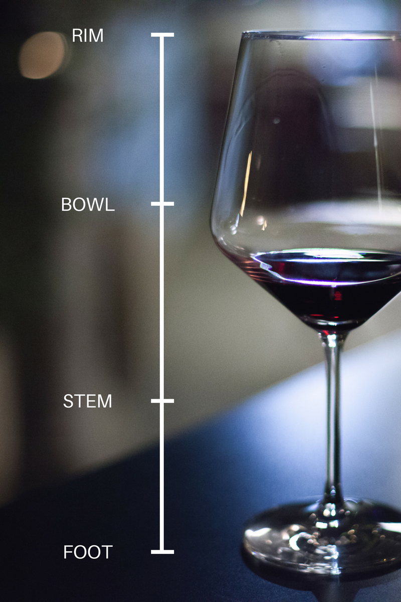 Anatomy of a glass