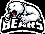 Snow Bear - mascot.png