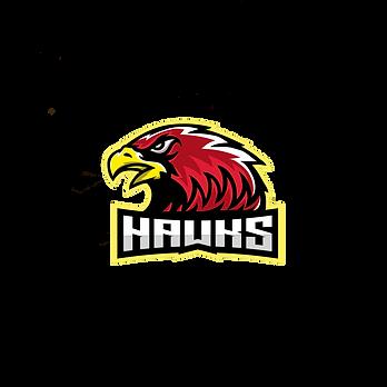Hawk Esports.png