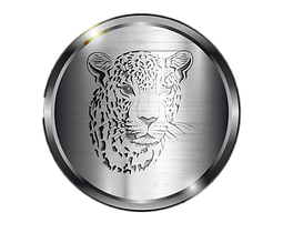 jaguaroncoin.png