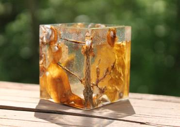 Autumn Trinket Box (SIDE 2)