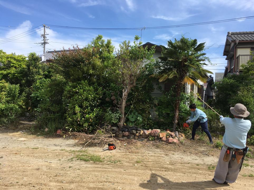 【伐採 庭 片付け 処分 草刈り】浜松市 西区 えにしプランニング 便利屋 雄踏町