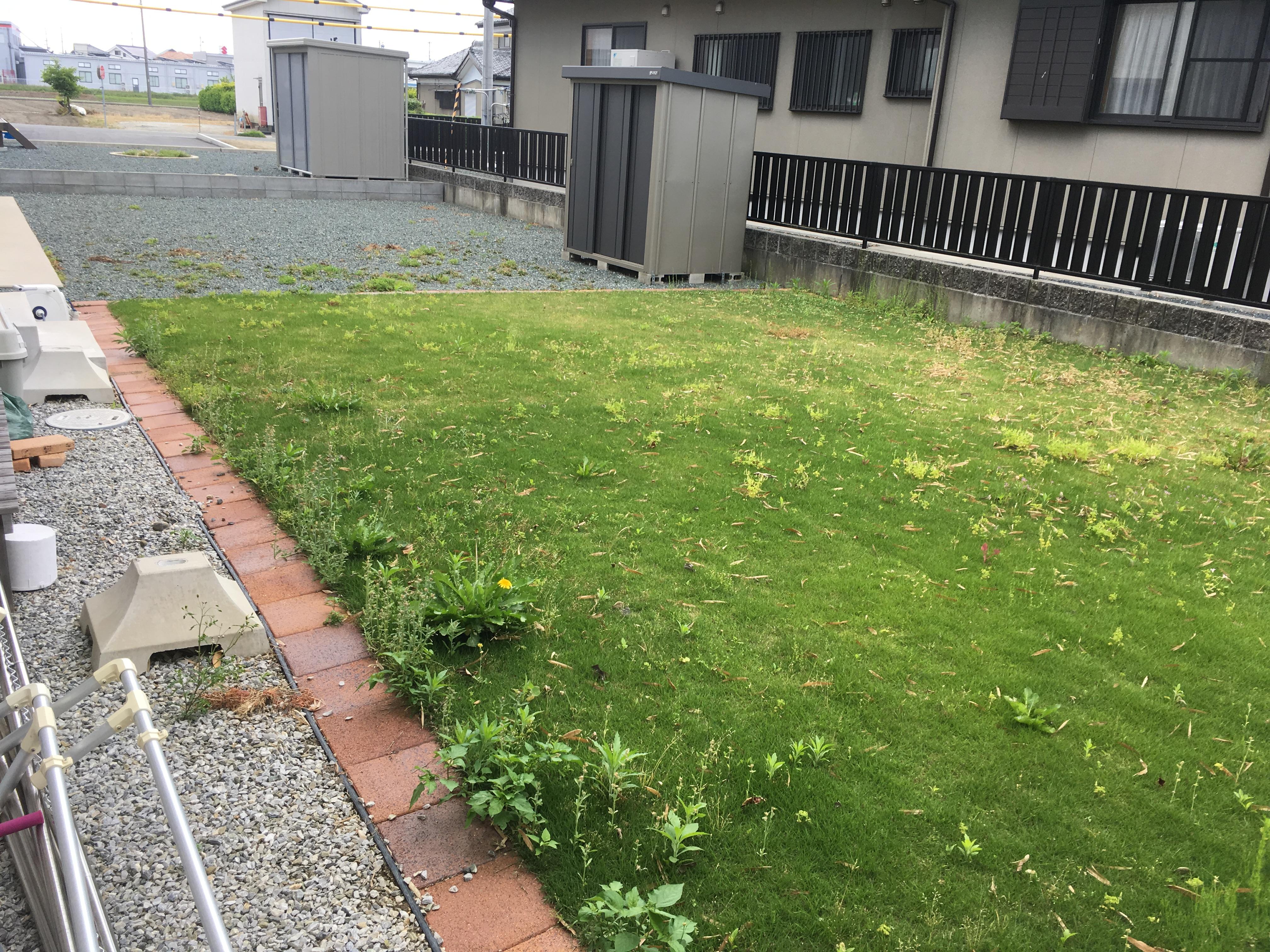 芝刈り前(磐田市)
