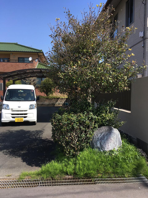 【スギナ 草刈り 剪定 処分】磐田市 えにしプランニング 便利屋 浜松市