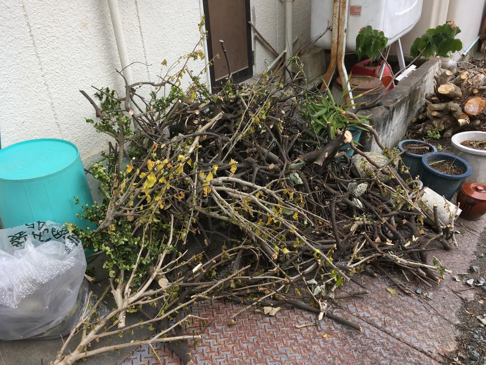 【枝葉 処分 庭木 樹木 不用品 ゴミ 草】浜松市 中区 えにしプランニング 便利屋