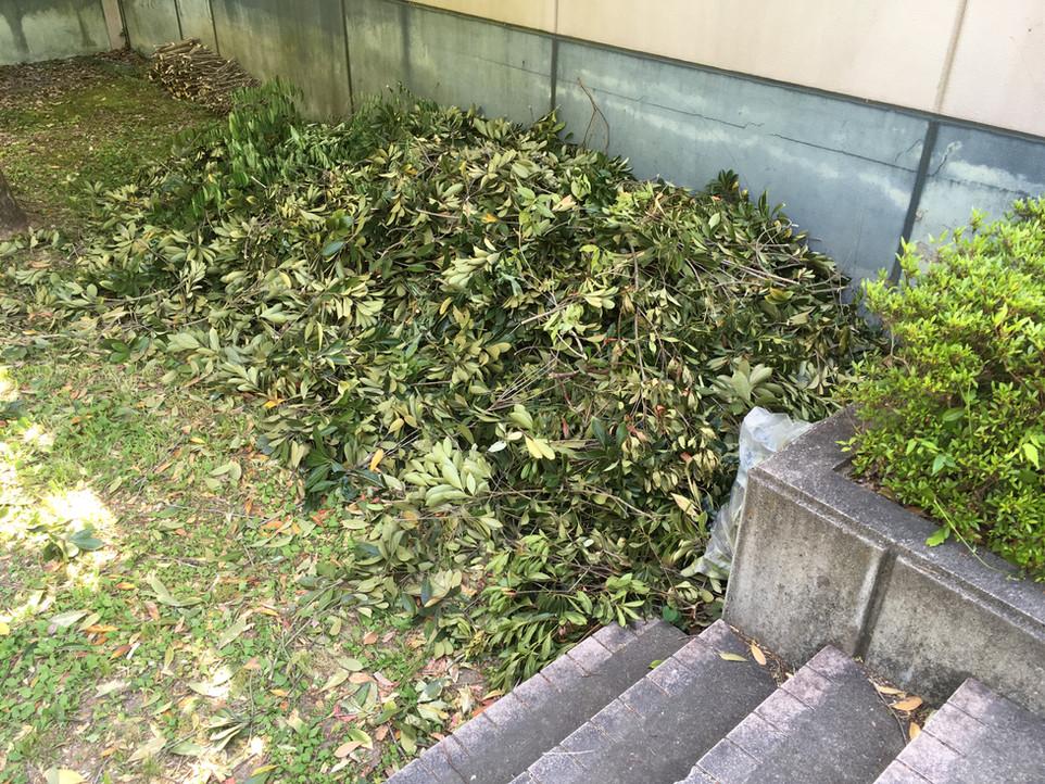 【草木 枝葉 処分 剪定 伐採 草刈り】浜松市 天竜区 えにしプランニング 便利屋