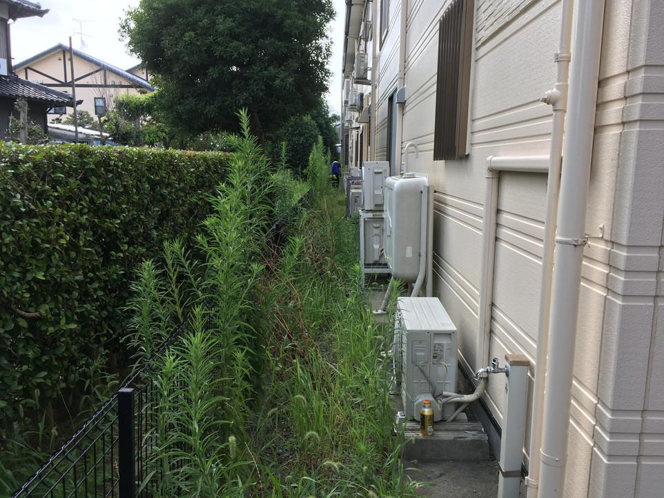 【介護施設 草刈り 草むしり】浜松市  中区 えにしプランニング 便利屋