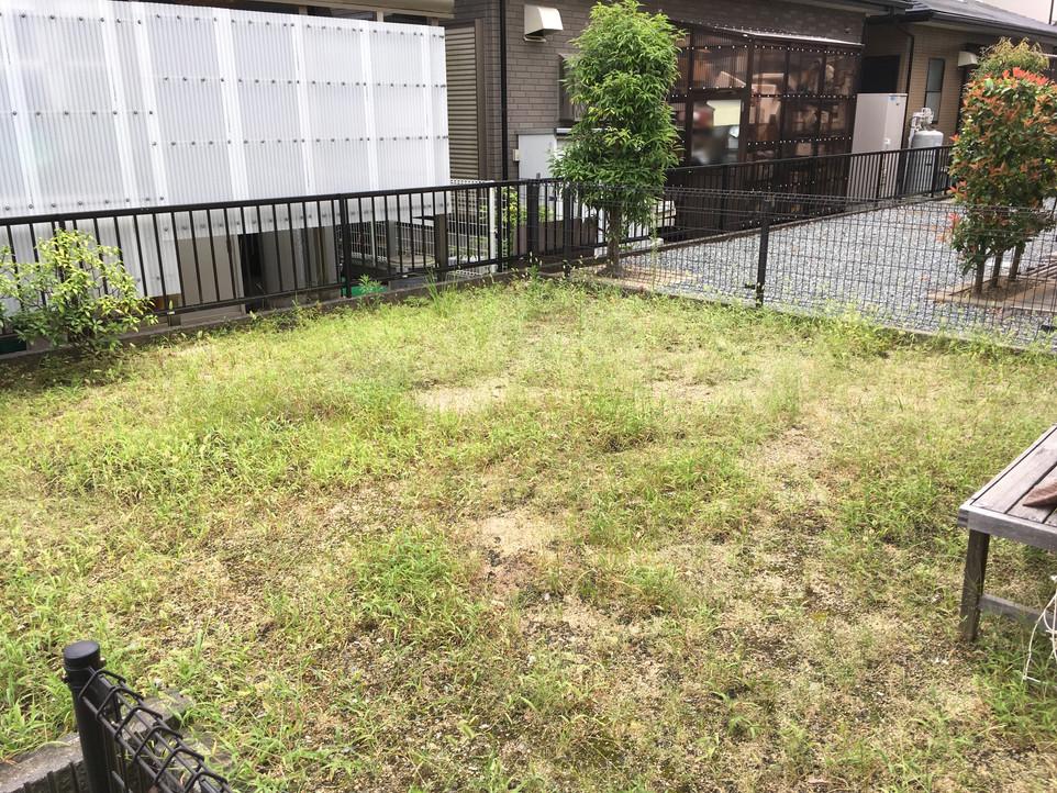 【草むしり 草刈り 伐採】浜松市北区 えにしプランニング 便利屋