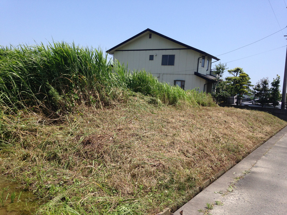【空き地 草刈り 草むしり】えにしプランニング 浜松市南区