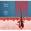 Thumbnail: Bestseller Infrarot Haarwuchs Laserhut