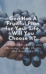 God Has A Fruitful Plan for Your Life. W