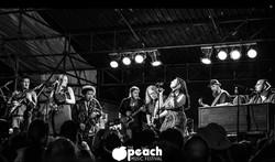 Peach Music Festival 2014