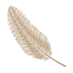 gold feather.png
