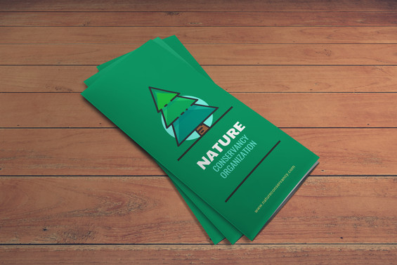 Nature-Conservancy-Trifold-Brochure-Exam