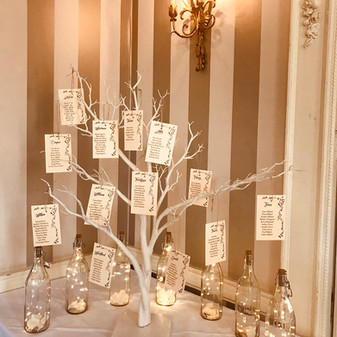 Table plan on white tree and twinkle bottles