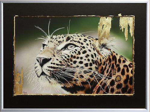 Leopard 2, Big Cat Gold Series