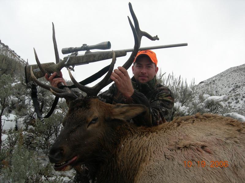 Elk Hunting