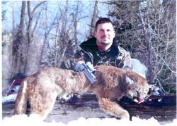 Trophy Mountain Lion