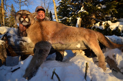 Trophy Mountain Lion308