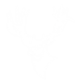 Trophy Elk Huntin