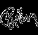 logo-belisa.png