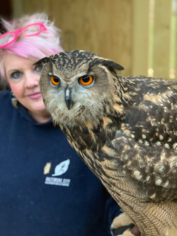 Owl Experience at Raptor Hill