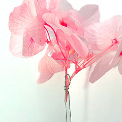 P_Flowertwist11_300-300.jpg